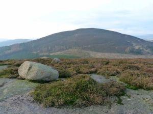 Pitfichie Hill